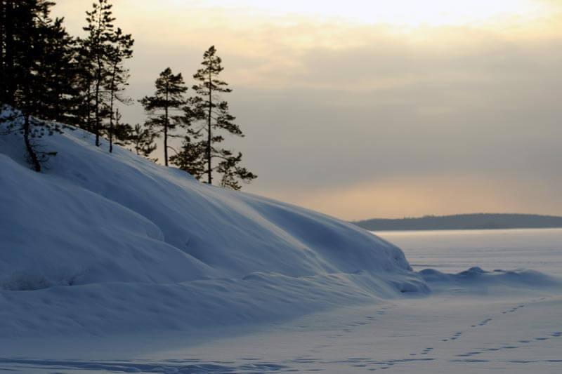 Murikanrannan pikkujoulut Tampereella